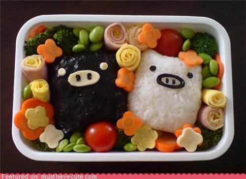 bento,carrots,egg,epicute,flowers,meat,onigiri,pig,rice balls,veggies