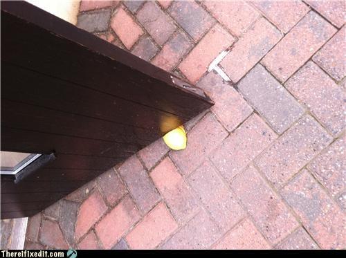 bad puns doorstop holding it up - 4668835840