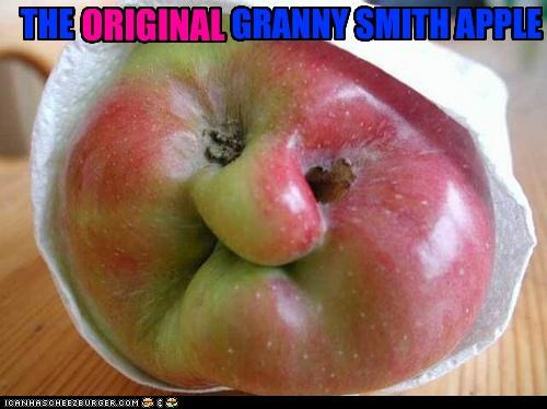 apple apt aptly caption captioned granny granny smith happy chair is happy name original pun - 4669894144