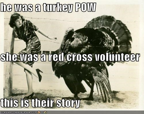 animal funny lady Photo Turkey wtf - 4670784768