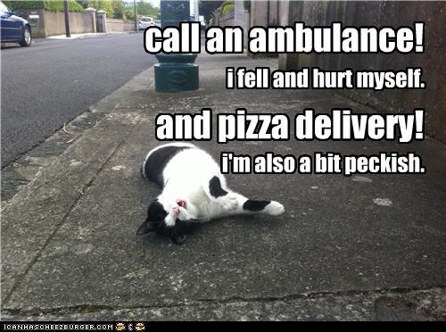 call an ambulance! and pizza delivery! i fell and hurt myself. i'm also a bit peckish.