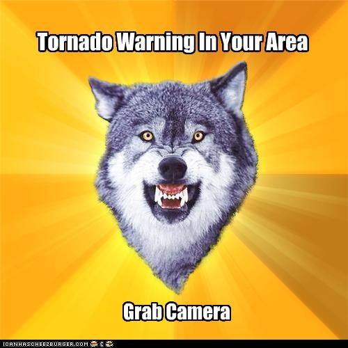 camera,Courage Wolf,like a man,tornado,warning