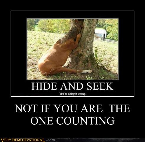 counting hide and seek horse wtf