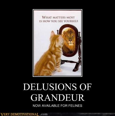 cat deliusion grandeur lion