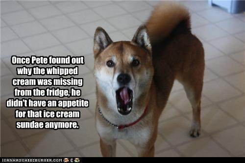 anymore,appetite,cannot unsee,do not want,fridge,ice cream,missing,reason,shiba inu,shocked,use,what has been seen,whipped cream