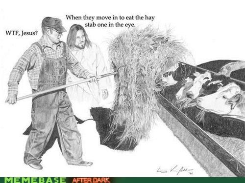 cows,eye,hay,jesus,lol,LOL Jesus
