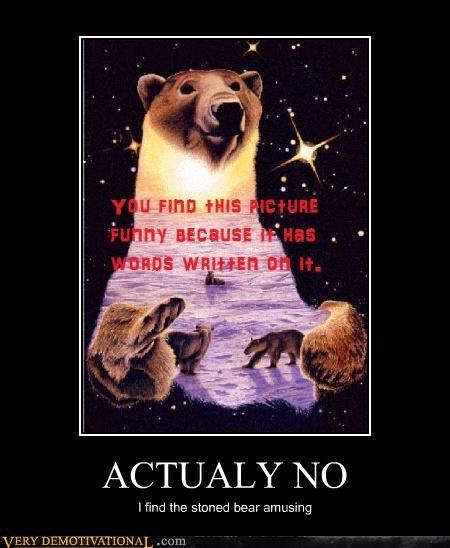 bear drug stuff no wtf - 4673360640