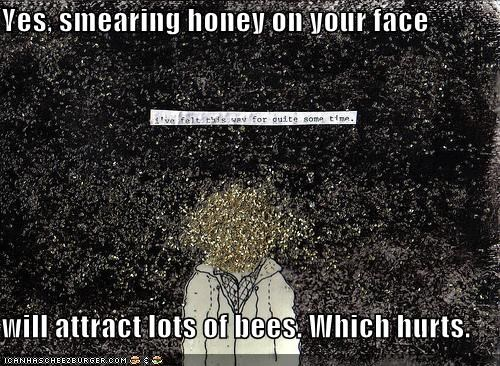 bad idea,bees,emolulz,honey,painful
