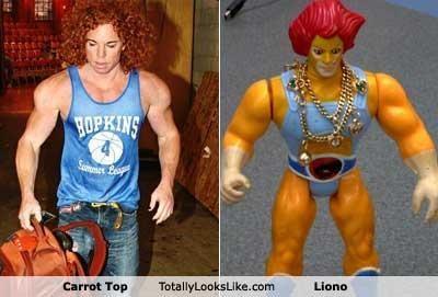 carrot top classics Liono - 4673836032