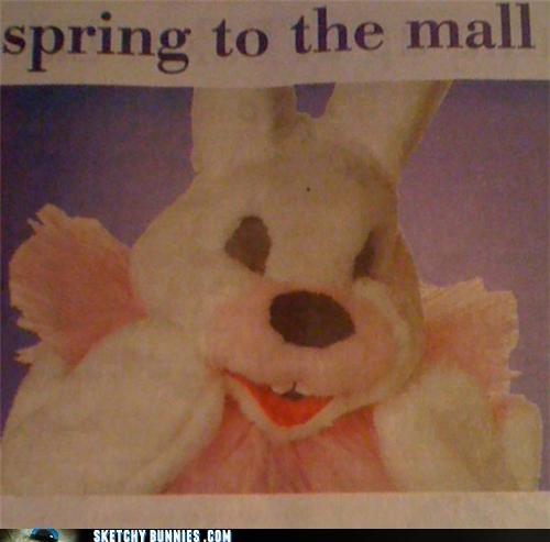 ads malls newspaper no thanks - 4673861376