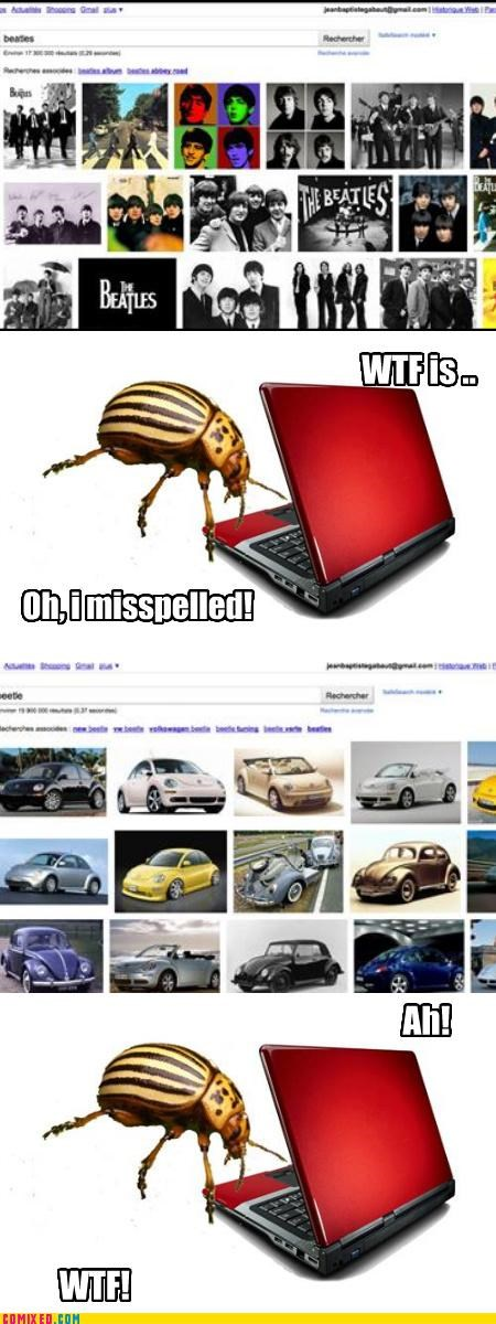 band beatle beetle bug car google search