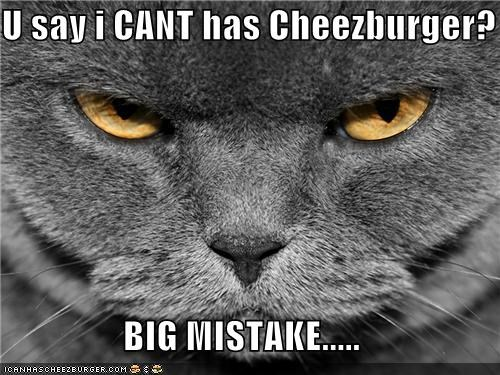 Cheezburger Image 4674205952