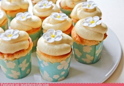 cupcakes epicute flowers springtime sunshine yuzu - 4675217408