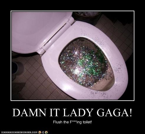 DAMN IT LADY GAGA! Flush the F***ing toilet!