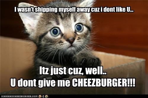 Cheezburger Image 4676415232