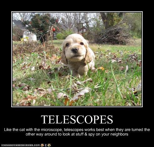 Cheezburger Image 4677958144