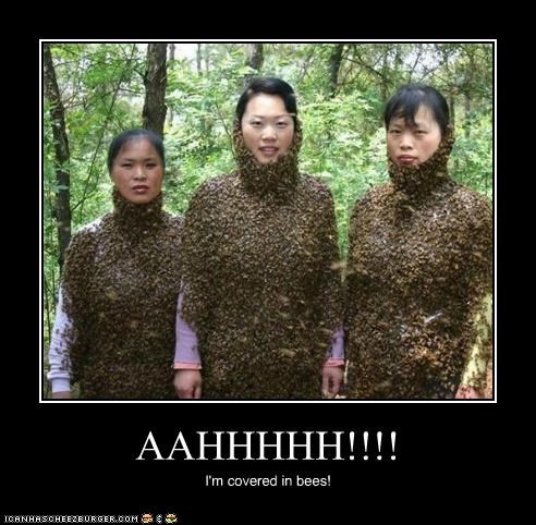 AAHHHHH!!!! I'm covered in bees!