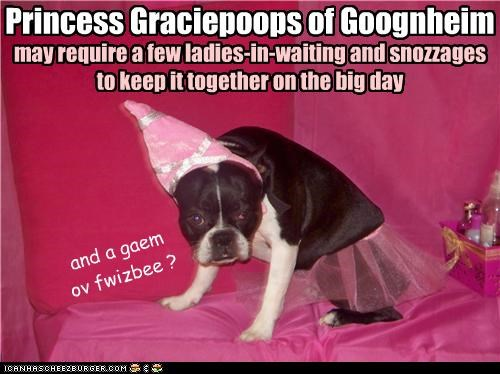 Princess Graciepoops of Goognheim may require a few ladies-in-waiting and snozzages to keep it together on the big day and a gaem ov fwizbee ?