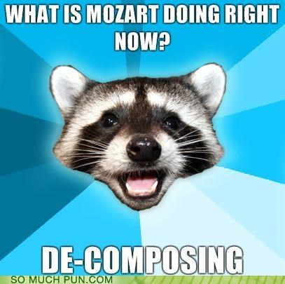 answer,antithesis,composer,decomposing,double meaning,lame,Lame Pun Coon,mozart,question