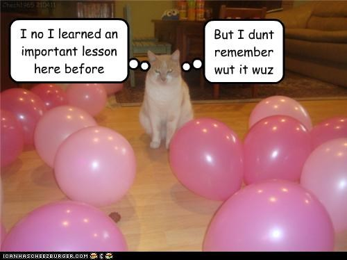 ballons balloon before caption captioned cat confused danger dangerous dont important learned lesson remember tabby trap - 4679660032