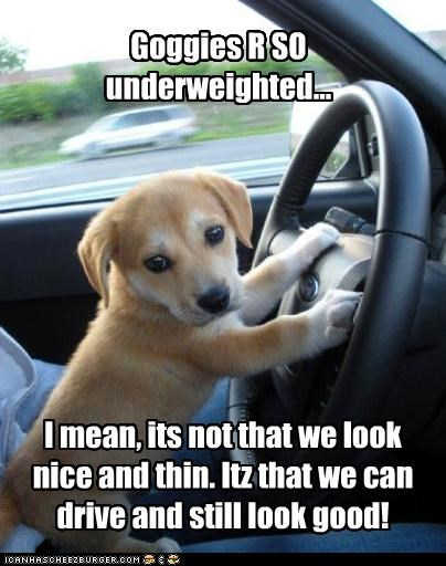 Goggies R SO underweighted... I mean, its not that we look nice and thin. Itz that we can drive and still look good!