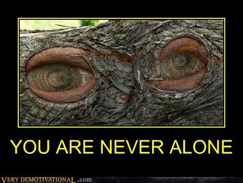 alone bark creepy knot tree - 4679763200