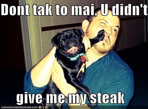 Cheezburger Image 4680162560