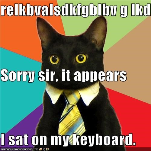 relkbvalsdkfgblbv g lkdsfhv Sorry sir, it appears I sat on my keyboard.