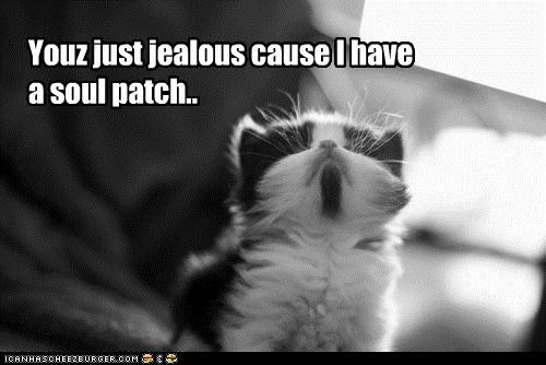 caption,captioned,cat,facial hair,i has,jealous,kitten,patch,soul,soul patch