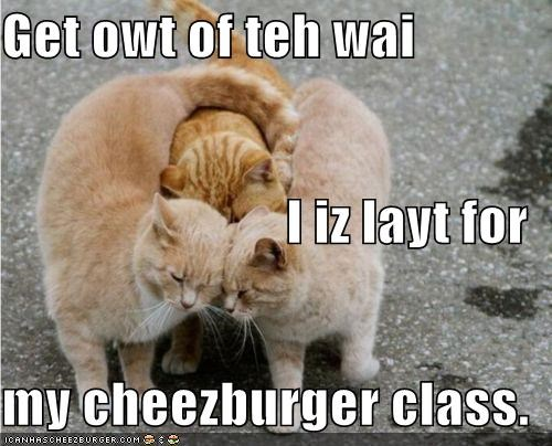 Cheezburger Image 4681344512