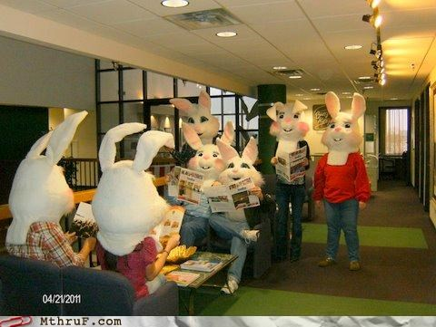 bunny costume easter wtf - 4682105344