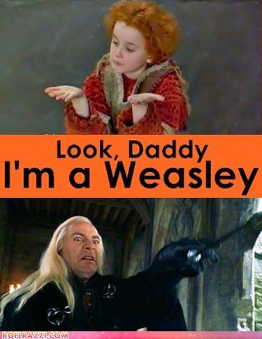 funny Hall of Fame Harry Potter sci fi the borrowers tom felton wtf - 4682399744