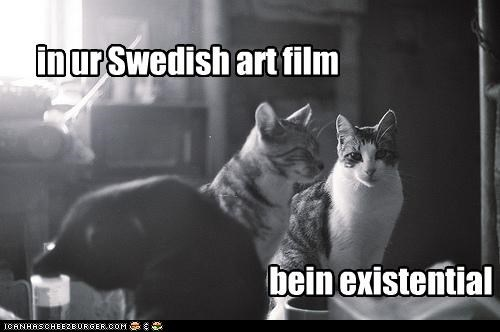art being black and white caption captioned cat Cats existentialism film - 4682533632