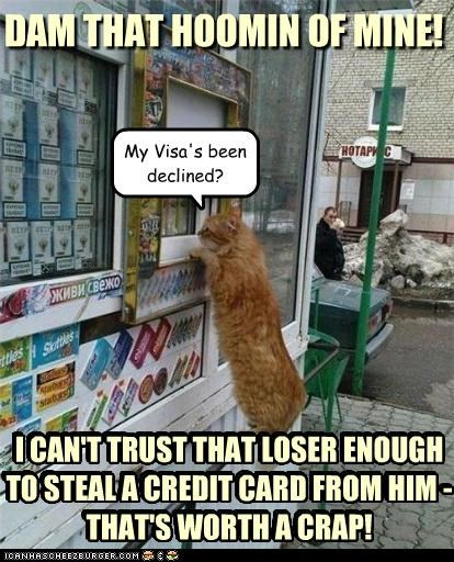 My Visa's been declined? DAM THAT HOOMIN OF MINE! I CAN'T TRUST THAT LOSER ENOUGH TO STEAL A CREDIT CARD FROM HIM - THAT'S WORTH A CRAP! I CAN'T TRUST THAT LOSER ENOUGH TO STEAL A CREDIT CARD FROM HIM - THAT'S WORTH A CRAP!
