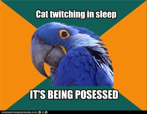 Cat twitching in sleep IT'S BEING POSESSED