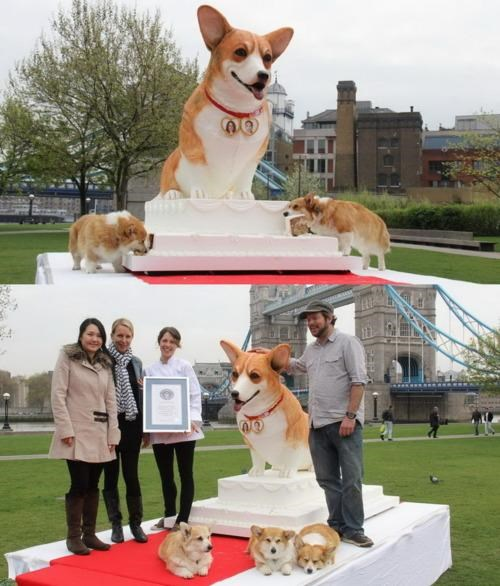 corgizzz1one doggeh Kickass Cake royal wedding