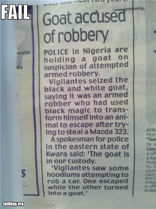 animals facepalm failboat goats g rated police Probably bad News - 4682935296