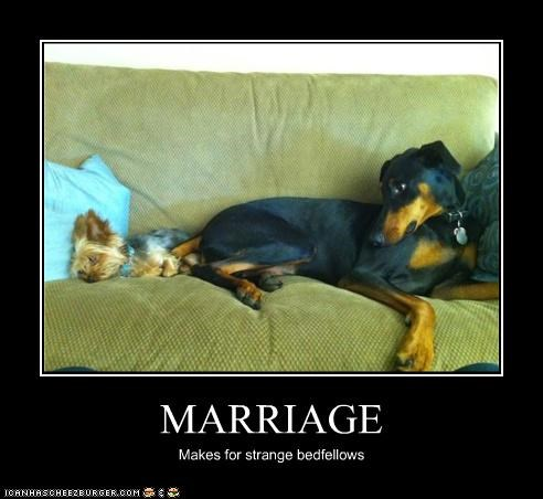 MARRIAGE Makes for strange bedfellows