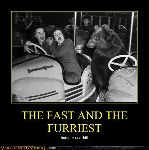 THE FAST AND THE FURRIEST bumper car drift