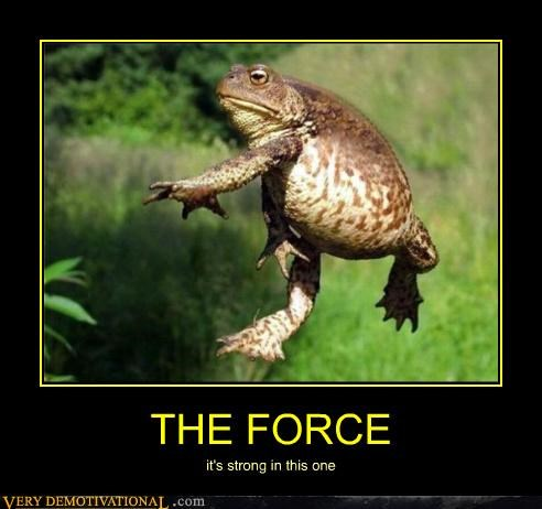 force,frog,hilarious,star wars