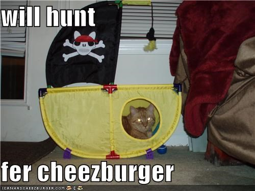Cheezburger Image 4691616512