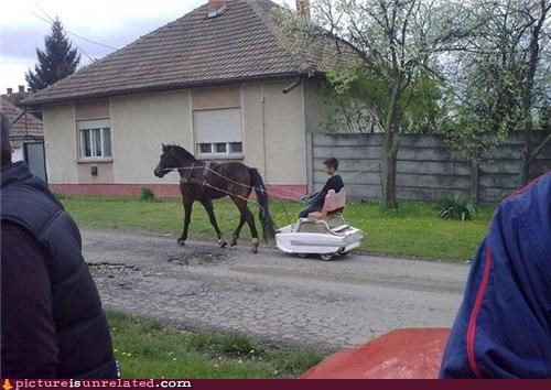 awesome car horse ride wtf - 4692046592