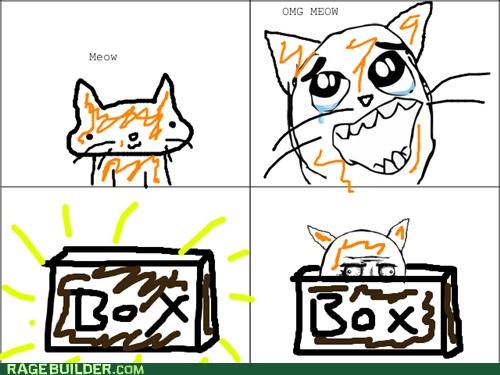 box,kitty,meow,plastic friend,Rage Comics