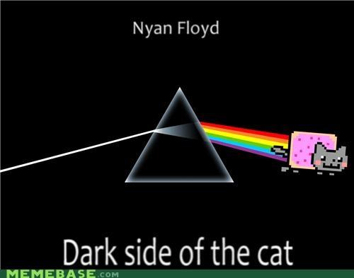 animals animemes Dark Side of the Moon Memes Nyan Cat pink floyd - 4694330112