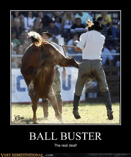 ball buster,crazy,horse,ouch,Terrifying