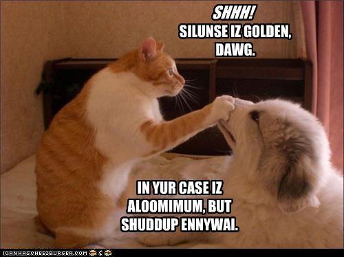 SHHH! SILUNSE IZ GOLDEN, DAWG. IN YUR CASE IZ ALOOMIMUM, BUT SHUDDUP ENNYWAI.
