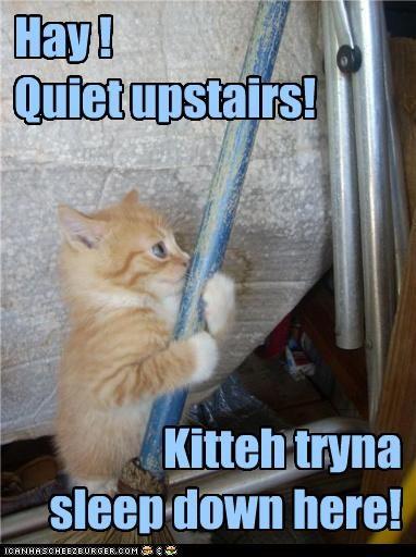 Hay !   Quiet upstairs!