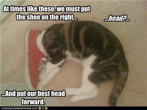 At times like these, we must put the shoe on the right... ...head?... ...And put our best head forward.
