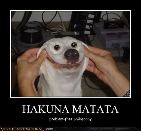 dogs free hakuna matata problem wtf - 4699510784