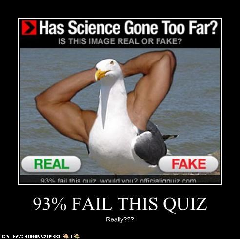 93% FAIL THIS QUIZ Really???